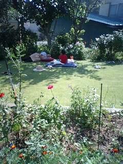 お庭でごろり。